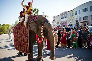 baraat elephant